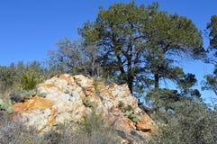 Parque nacional da curvatura grande, Texas imagens de stock