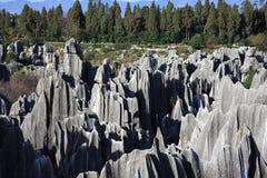 Parque nacional da floresta de pedra de Shilin Imagens de Stock