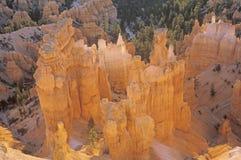 Parque nacional da garganta de Bryce Fotos de Stock Royalty Free