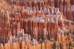 Parque nacional da garganta de Bryce Foto de Stock