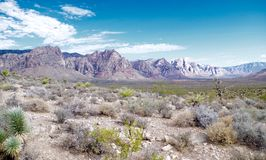 Parque nacional da garganta vermelha da rocha, Nevada fotos de stock