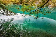 Parque nacional Dalmácia dos lagos Plitvice, Croácia Foto de Stock Royalty Free