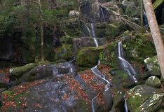 Parque nacional das grandes montanhas fumarentos Fotografia de Stock