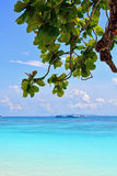 Parque nacional das ilhas de Similan Fotografia de Stock Royalty Free