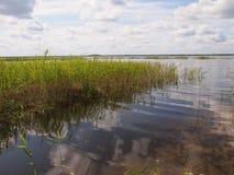 Parque nacional de Ķemeri (Letónia) Foto de Stock