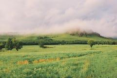Parque nacional de ArxanAershan fotos de stock royalty free