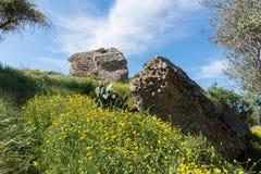 Parque nacional de Ashkelon que visita Imagenes de archivo