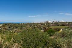 Parque nacional de Ashkelon que visita Imágenes de archivo libres de regalías