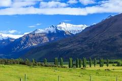 Parque nacional de aspiração do Mt Fotografia de Stock