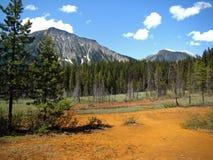 Parque nacional de Banff Fotos de Stock Royalty Free