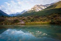 Parque nacional de Banff fotografía de archivo libre de regalías