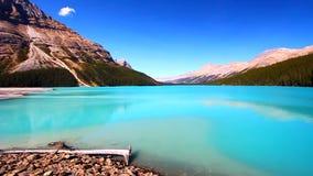 Parque nacional de Banff do lago Peyto video estoque