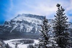 Parque nacional de Banff no inverno Foto de Stock Royalty Free