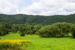 Parque nacional de Bieszczady no Polônia Fotos de Stock Royalty Free