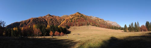 Parque nacional de Bucegi romania Foto de Stock Royalty Free