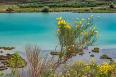 Parque nacional de Butrint da paisagem da mola, Albânia imagem de stock
