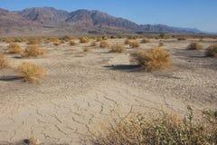 Parque nacional de California, Death Valley, dunas del fango Imágenes de archivo libres de regalías