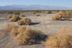 Parque nacional de California, Death Valley, dunas del fango Fotografía de archivo