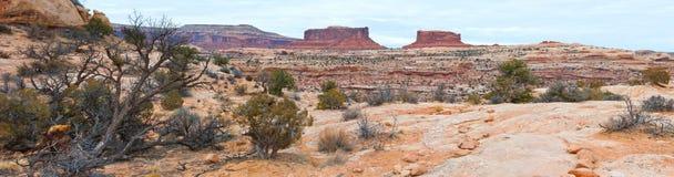 Parque nacional de Canyonlands Fotografía de archivo