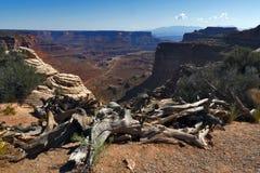 Parque nacional de Canyonlands, Utah, los E fotografía de archivo libre de regalías