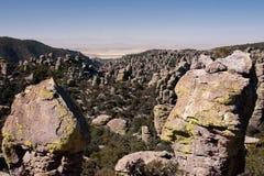 Parque nacional de Chirikahua en los E.E.U.U. Imágenes de archivo libres de regalías