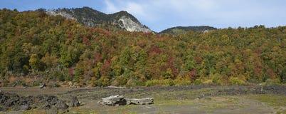 Parque nacional de Conguillio no Chile do sul fotos de stock