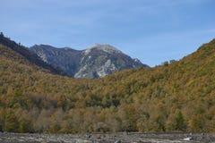 Parque nacional de Conguillio no Chile do sul fotos de stock royalty free
