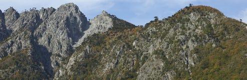Parque nacional de Conguillio no Chile do sul imagem de stock
