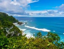 Parque nacional de Corcovado Fotografia de Stock