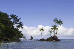 Parque nacional de Corcovado, Costa Rica Imagens de Stock