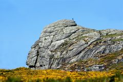 Parque nacional de Dartmoor Fotografía de archivo