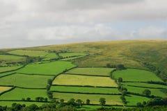 Parque nacional de Dartmoor Foto de archivo libre de regalías