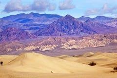 Parque nacional de Death Valley de las dunas planas del Mesquite Fotos de archivo