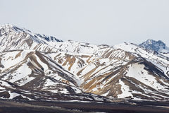 Parque nacional de Denali imagem de stock