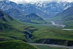 Parque nacional de Denali fotos de stock