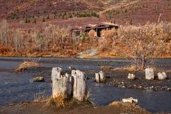 Parque nacional de Denali fotografía de archivo libre de regalías