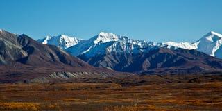 Parque nacional de Denali no outono fotografia de stock