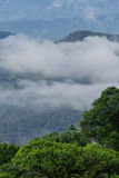 Parque nacional de Doi Inthanon, Tailândia Foto de Stock Royalty Free