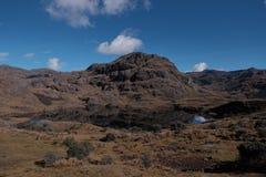 Parque nacional de Ecuador Imagen de archivo