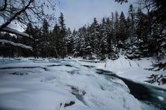 Parque nacional de geleira que neva no inverno Imagem de Stock Royalty Free