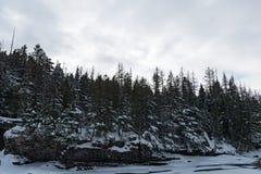 Parque nacional de geleira que neva no inverno Imagem de Stock