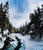 Parque nacional de geleira que neva no inverno Fotos de Stock Royalty Free