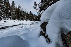 Parque nacional de geleira que neva no inverno Fotografia de Stock Royalty Free