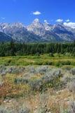 Parque nacional de Grant Tetons Foto de archivo libre de regalías