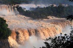 Parque nacional de Iguassu imagen de archivo