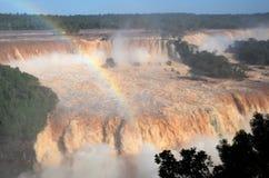 Parque nacional de Iguassu fotografía de archivo