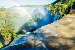 Parque nacional de Iguassu fotos de archivo