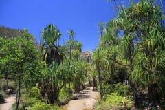 Parque nacional de Isalo Imagenes de archivo