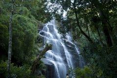 Parque nacional de Itatiaia Foto de archivo