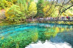Parque nacional de Jiuzhaigou situado en el norte de la provincia de Sichuan en la región al sudoeste de China imagen de archivo libre de regalías